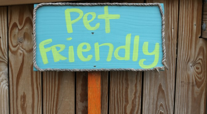 Pet-Friendly Restaurants in South Mississippi